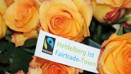 13. - 27.09. Fairtrade Blumen...